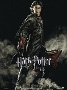 harry-potter-4-poster03.jpg