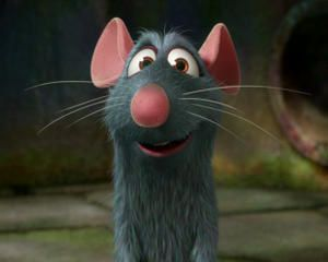 photo4-ratatouille.jpg