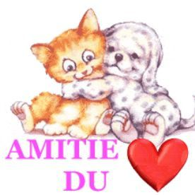 amitie amour forum 747 th