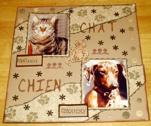 chien-et-chat001-edited-copie-1.JPG
