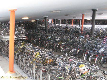 GroningenBernardLaize.jpg
