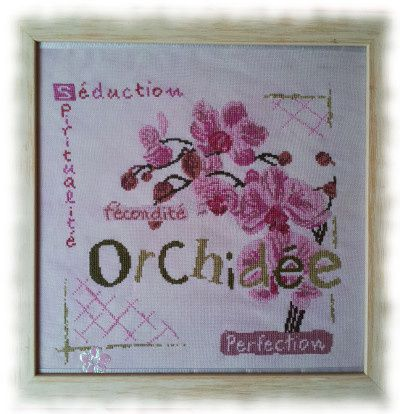 lili_point_orchidee-copie-2.jpg