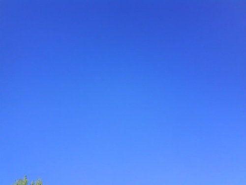 7 Fév 10 - Ciel bleu