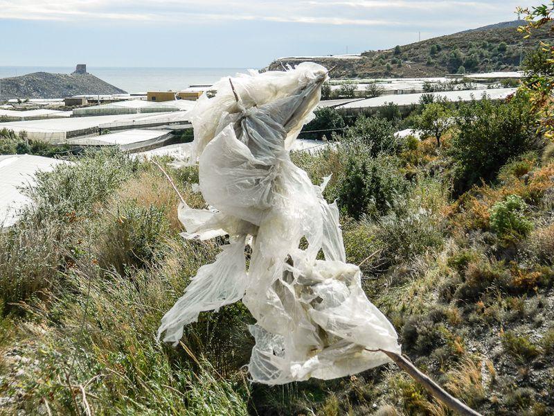 Album - La mer de plastique (Espagne)
