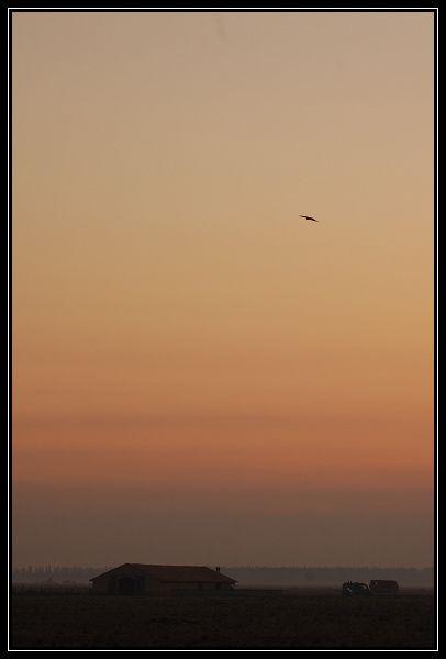 bleau-0545-border.jpg