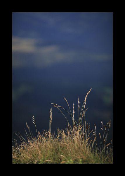 _MG_4304-border.jpg
