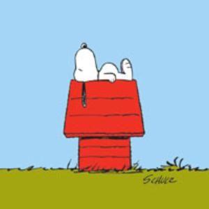 Snoopy sieste-3