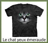 ANIMAL CHATS FAMILLE