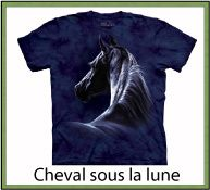 ANIMAL CHEVAUX FAMILLE