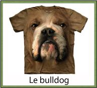 ANIMAL CHIENS FAMILLE