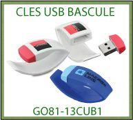 Cle vign SE GO81 13CUB1