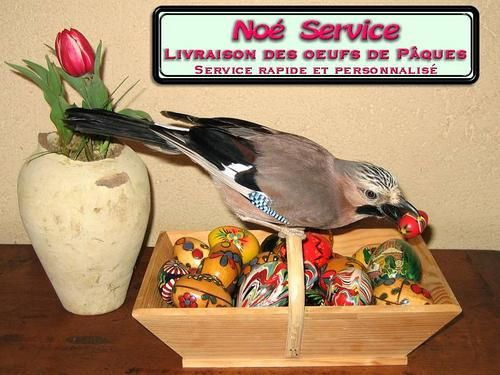 Noe-Service-Paques.jpg