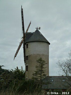 moulin-fee-3.JPG