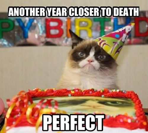 grumpy-cat-birthday-Morgane-500.jpg