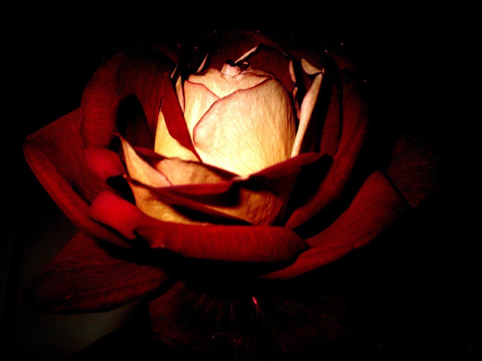 Scene de rencontre amoureuse le rouge et le noir