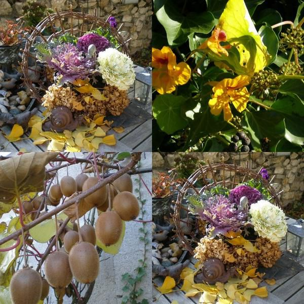 collage-jardin.jpg