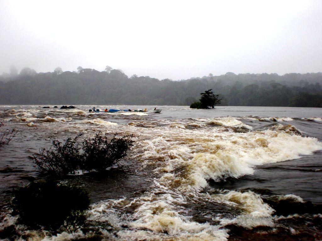 Des photos diverses de la Guyane (en vrac).
