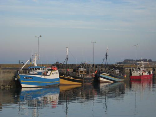 ROSCOFF-018-copie-1.jpg