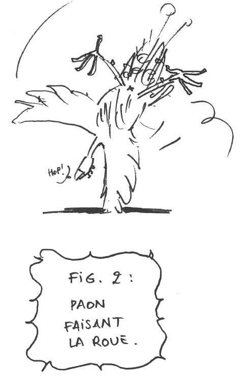 Pan2.PNG