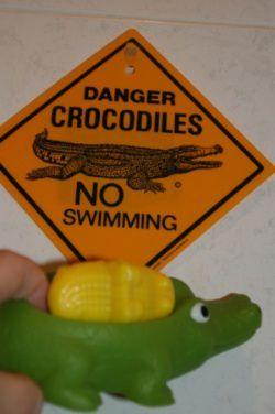 CrocosDanger.JPG