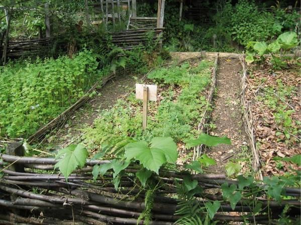 Un jardin cologique visiter neomansland le blog vert for Le jardin potager bio
