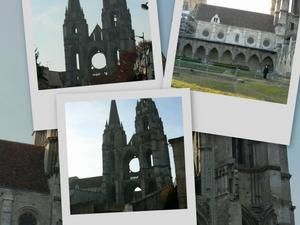 collage-copie-2.jpg