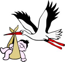 220px-Stork_with_new-born_child.png