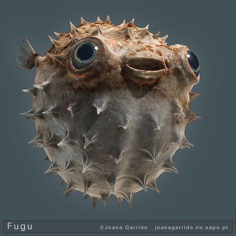 Fugu12a-pequena.jpg