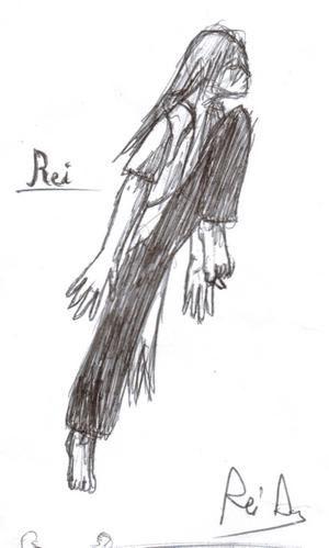 Rei-saut-stylot.jpg