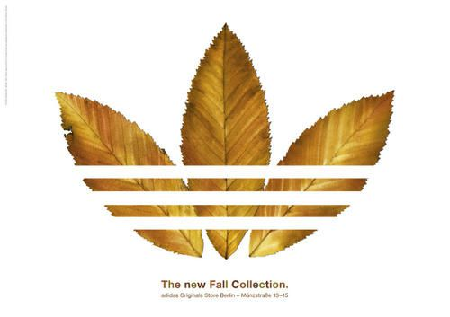 AdidasFallCollection.jpg