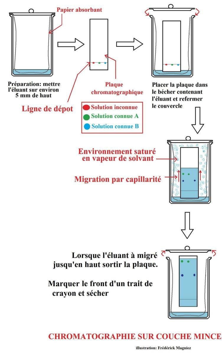 application de la biotechnologie alimentaire
