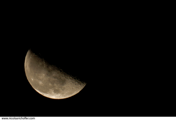 LUNE.500MM.2335.png