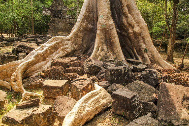 06 Siem-Reap-Angkor (160)