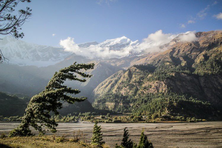 05 Annapurnas (51)