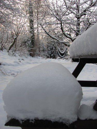 neige2-12-fev-13.jpg