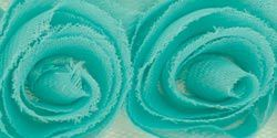 sea-ribbon-roses.jpg