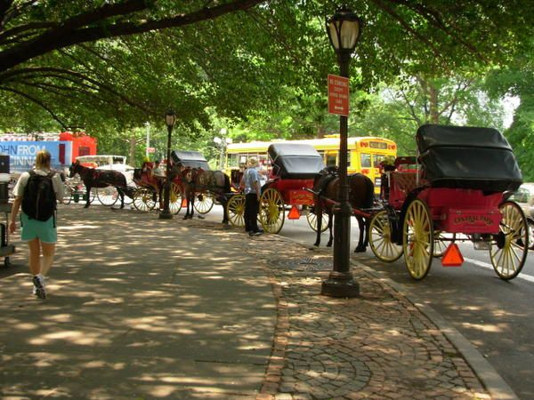 caleches-central-park.jpg