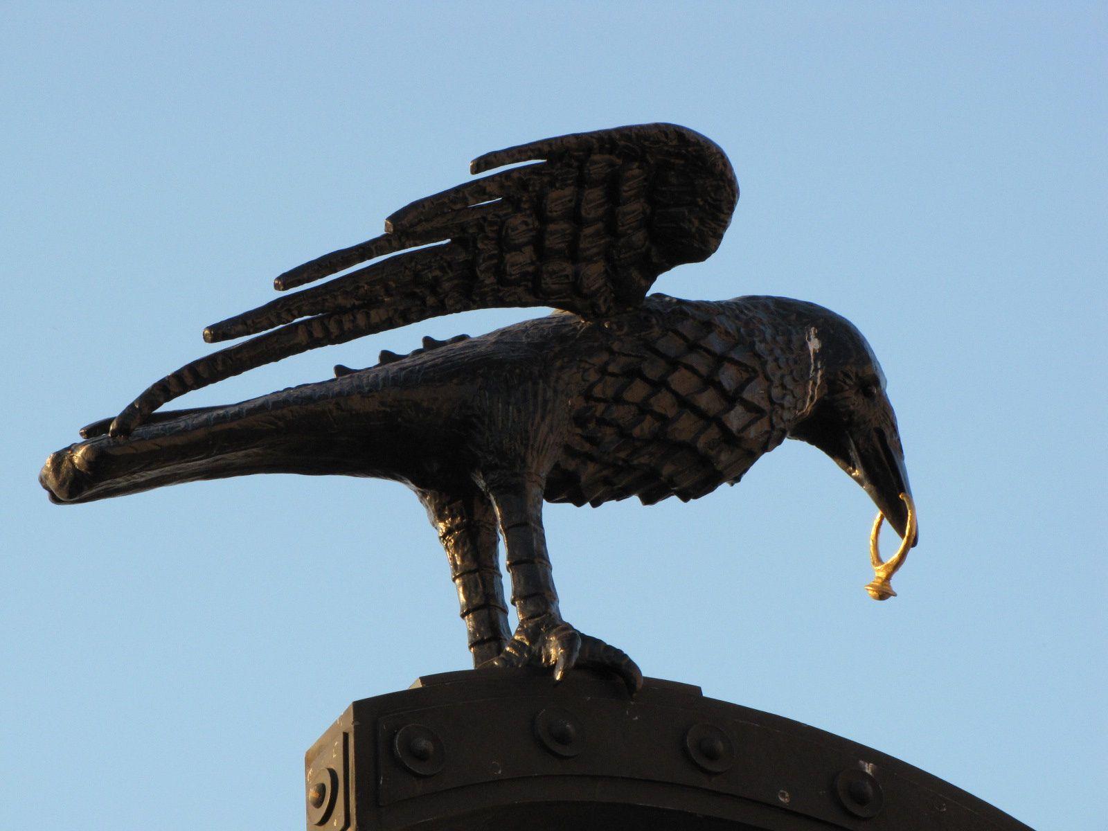 oiseau-porte-du-ch-trau.jpg