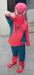 spider-eva2-copie-2.jpg