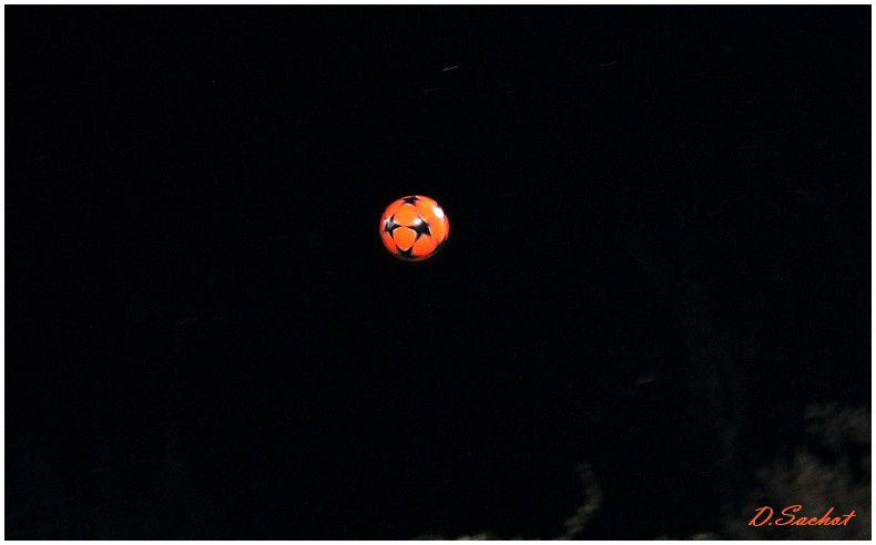 album-n--14-0368-border.jpg