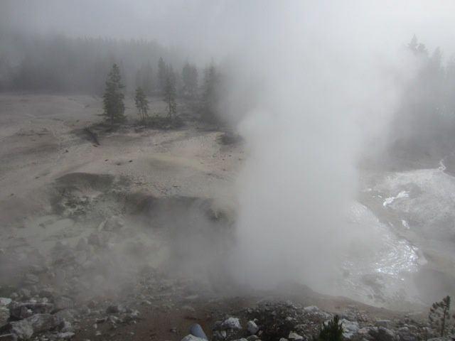 A-Yellowstone 6078S