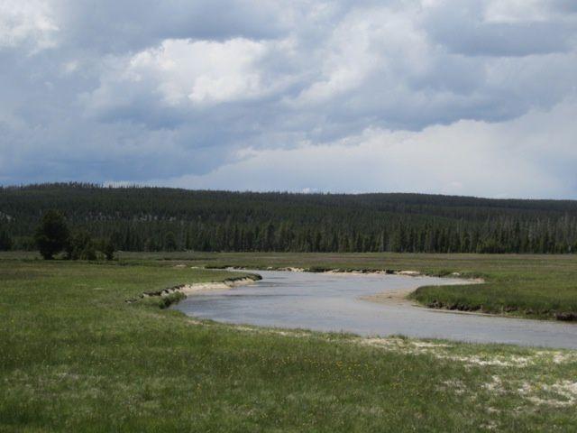 B-Yellowstone 6254S