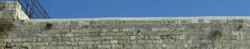 par-dessus-le-mur.jpg