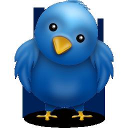 oiseau-twitter-chou.png
