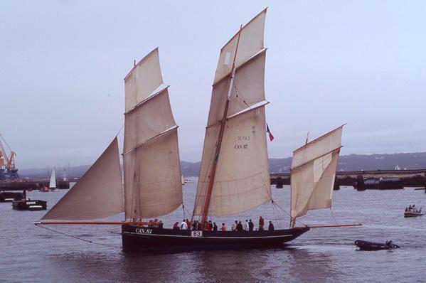 Fête des voiliers, petits et grands, sur la rade de BREST en juillet 2004.L'année prochaine BREST 2008 !