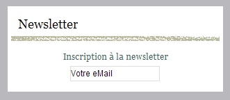 Inscription-Newsletter.PNG