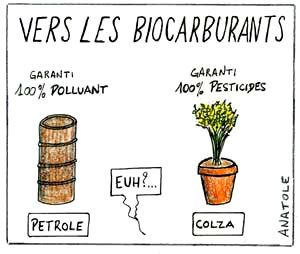 biocarburants.jpg