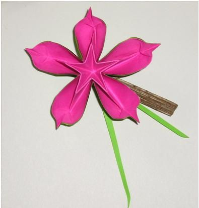 Fleur Coeur Détoile Le Blog Althea