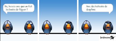 birds-flipper.png