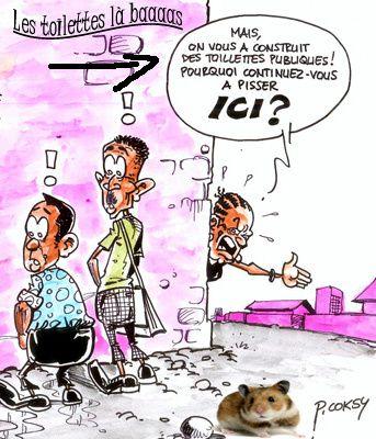 12-12-12-PHARAMSTER-Rabat-toilettes-publiques.jpg